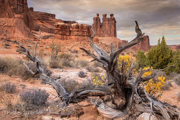Arches National Park | Utah Desert Scenery - Fine Art Nature Photography For sale