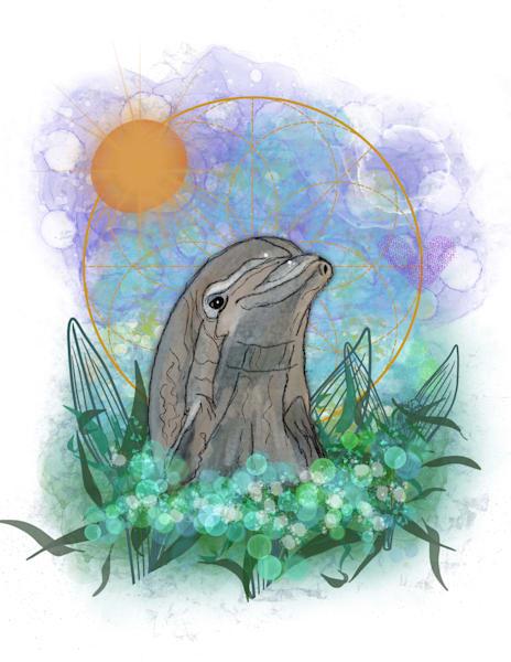 Dolphin  Art | Lynne Medsker Art & Photography, LLC
