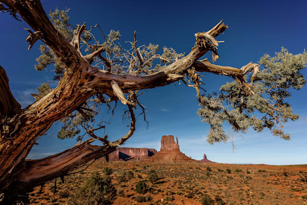 Amazing view of Sandstone rock formation in Monument Valley