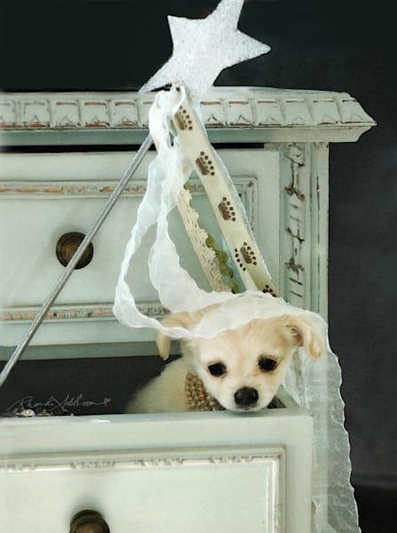 Puppy Wishes