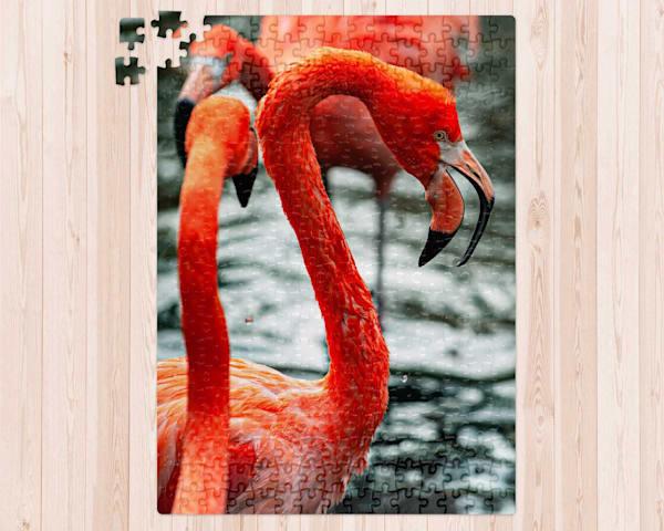 American Flamingo 300 pc. Puzzle