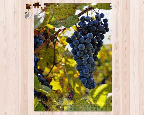 Grapes On The Vine 300 pc. Puzzle