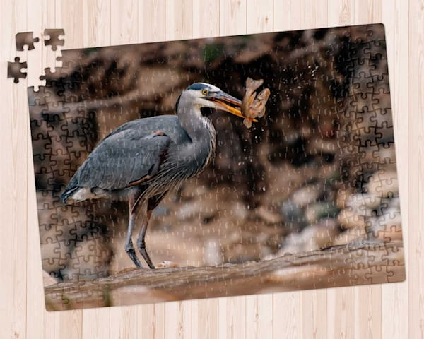 Great Blue Heron 300 pc. Puzzle