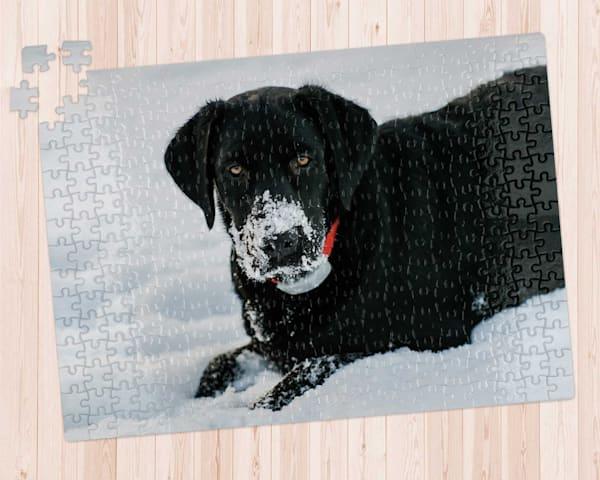 Snow Dog 300 pc. Puzzle