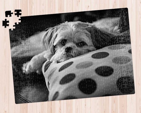 Doggie Daze 300 pc. Puzzle