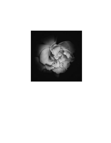 Reticense Art | Sunrise Galleries
