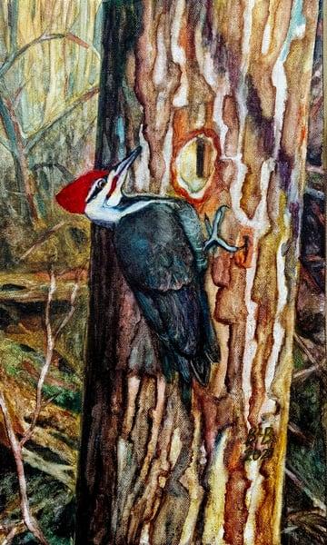 Winter Woodpecker Art | Blissful Bonita Art Studio & Gallery