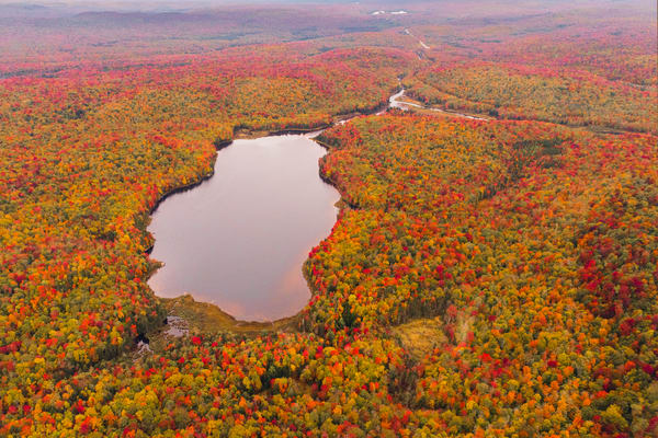 Nelson Lake Fall Aerial Photography Art   Kurt Gardner Photogarphy Gallery