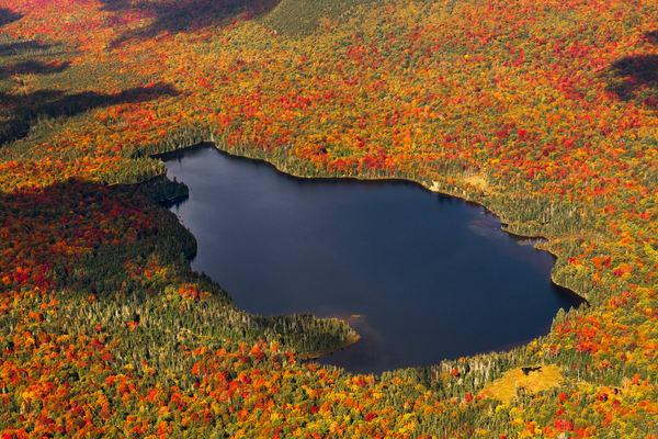 Salmon Pond Fall Aerial Photography Art   Kurt Gardner Photogarphy Gallery