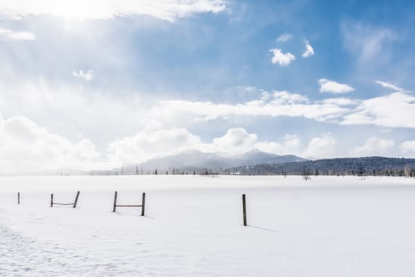 Snowy Landscape with Fence