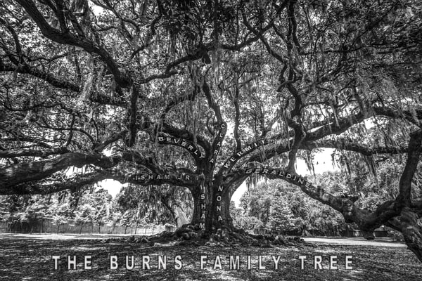 Personalized Family Tree of Life