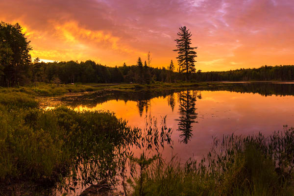 Twin Ponds Sunrise Photography Art | Kurt Gardner Photogarphy Gallery