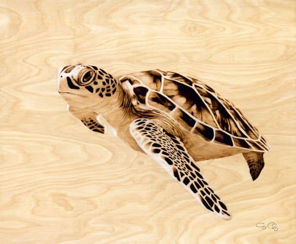 Sea Turtle Art | GeorgeCharriezArt