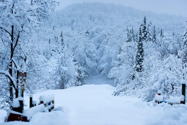 Snowmobile Trail 1 North St Photography Art   Kurt Gardner Photogarphy Gallery
