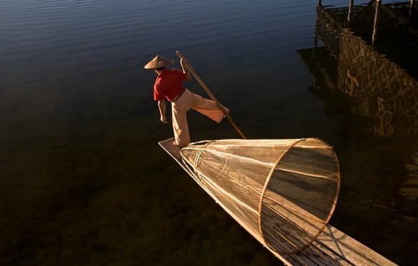 Golden Weir Photography Art | Felice Willat Photography