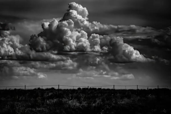 Portriat Of A Fence Photography Art | Rinenbach Photography