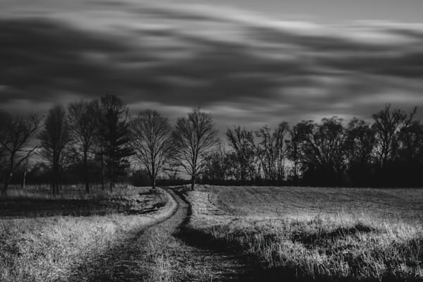 Walk With Me. Photography Art | Rinenbach Photography