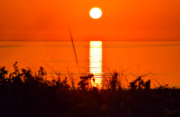 Summer Glow Photography Art | The Colors of Chatham