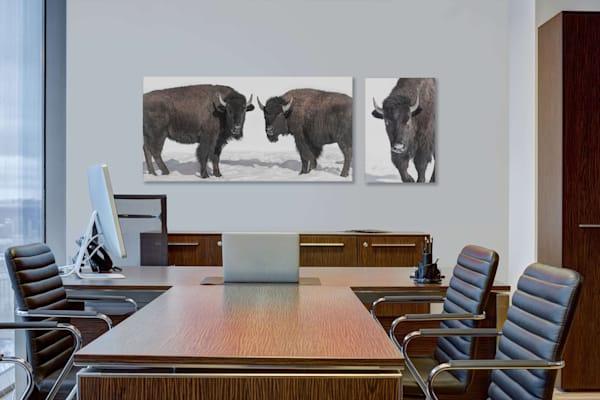 Bison Diptych Photography Art | Beth Sheridan, Grace Fine Art Photography