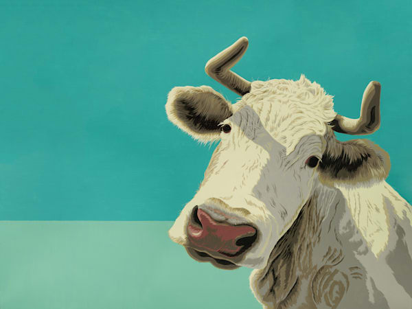 Graphic cow with horns on aqua background