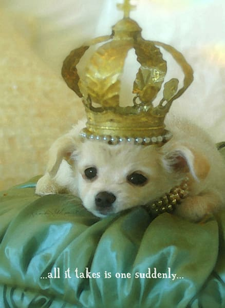 Crowned Puppy Art