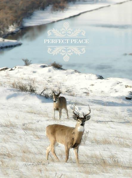 Perfect Peace Deer in Snow Art