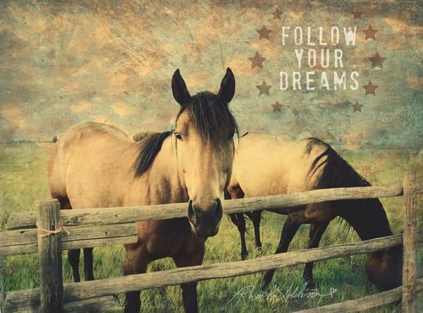 Horses Follow your dreams