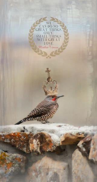 Flicker Bird Great Love Art