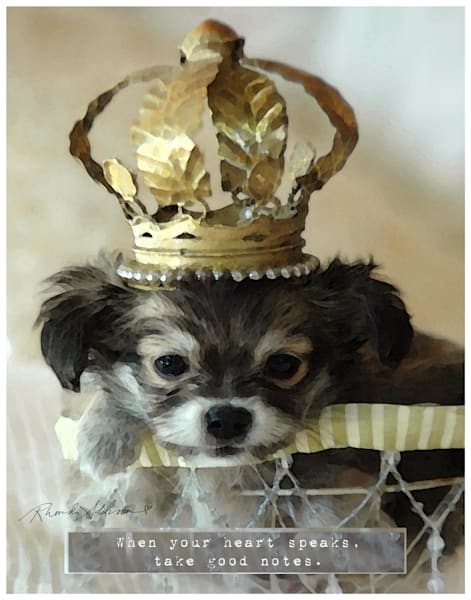 Chihuahua Puppy Art