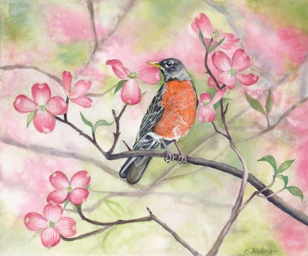 All American Robin  Art | Katherine Rodgers Fine Art