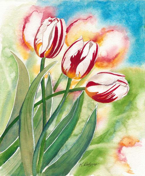 Canadian Tulips  Art   Katherine Rodgers Fine Art