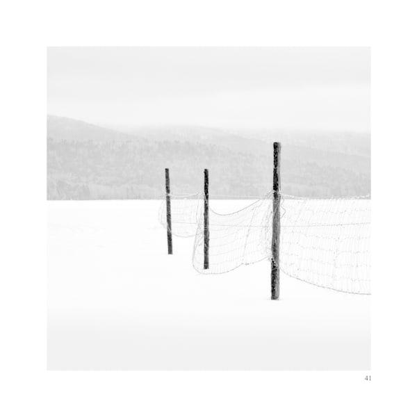 41 Art | Roy Fraser Photographer