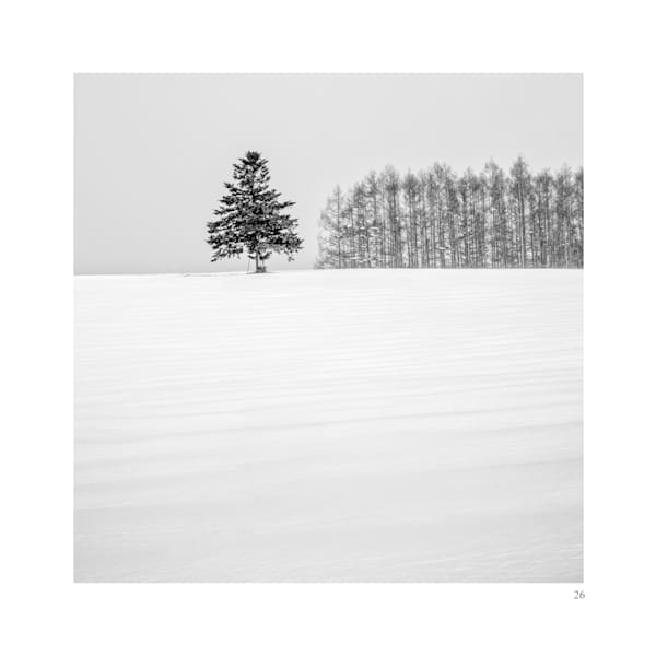 Biei6 Art | Roy Fraser Photographer