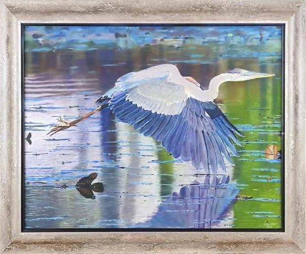 Swooping Heron Art   Greg Stett Art