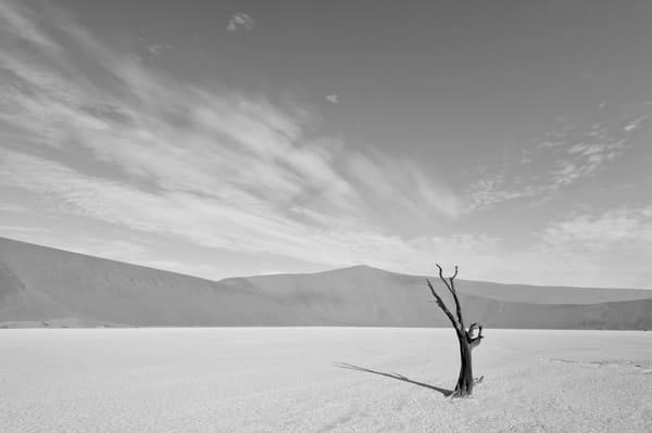 Beautiful desert landscape in black & white.