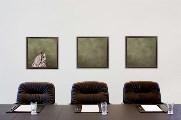 Horned Owl Triptych  Photography Art | Beth Sheridan, Grace Fine Art Photography
