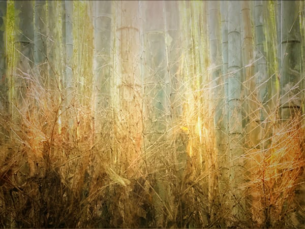 Golden Bamboo Photography Art | Carol's Little World