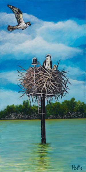 Home Sweet Osprey Art | Gallery 526
