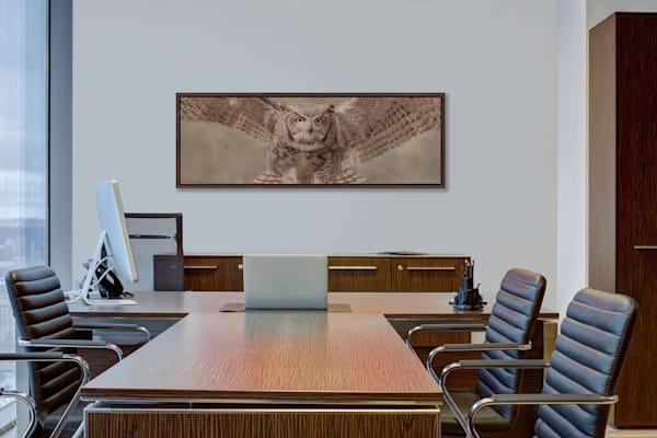 Horned Owl In Flight Photography Art | Beth Sheridan, Grace Fine Art Photography