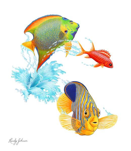 Coral Reef Fish Art | Randy Johnson Art and Photography