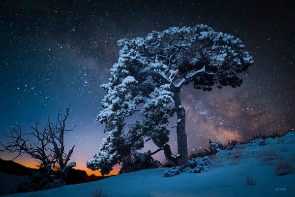 A Winter Morning Photography Art | McKendrick Photography