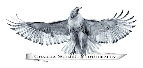 $25 Gift Card | Charles Schmidt Photography
