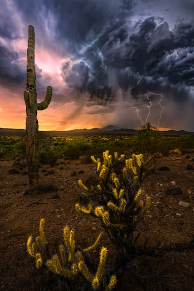 Triple Strike Photography Art | Garsha18 Fine Art Photography