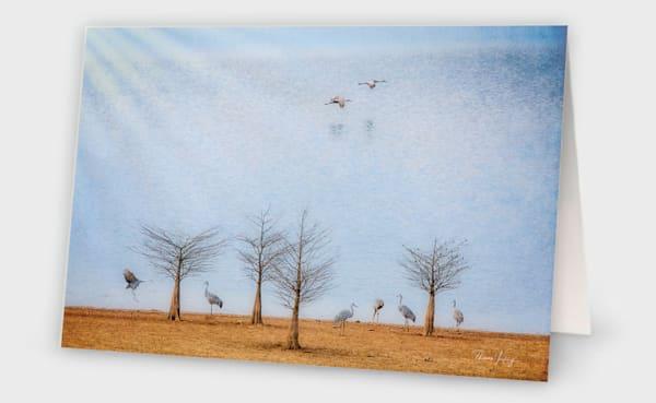 Sandhill Soirée Photography Art | Thomas Yackley Fine Art Photography