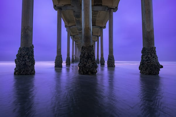 Purple Days Photography Art | Garsha18 Fine Art Photography