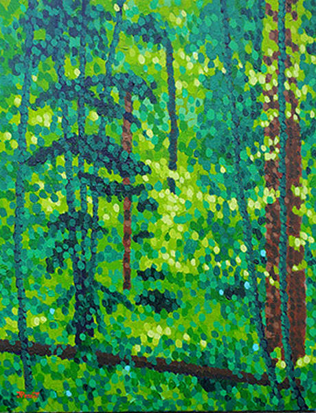 Summer Sunlight In The Woods Art | Jim Pescott Art