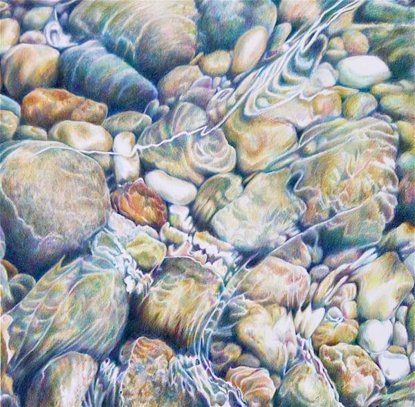 Tidal Pool Art   ebaumeistermcintyre