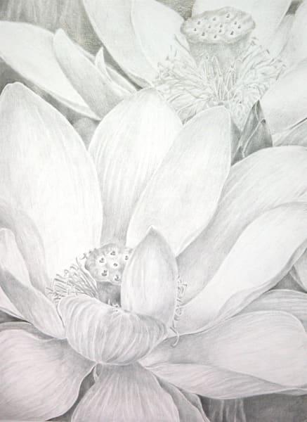 Lotus Garden Art | ebaumeistermcintyre