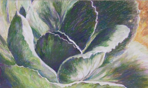 Cabbage Bloom Art | ebaumeistermcintyre