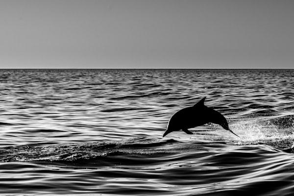 Ocean Silhouette Photography Art | Garsha18 Fine Art Photography